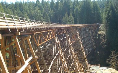 Kinsol Trestle Bridge Rehabilitation
